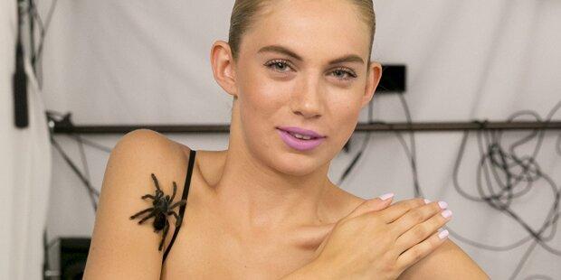 ANTM: Spinnen und Schlangen