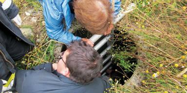 Frauchen stürzte 9Meter in Brunnen