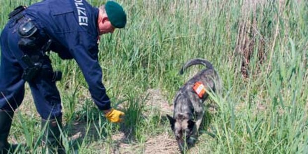 Vermisster Mann tot im Wald gefunden