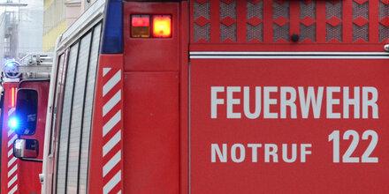 Hund stirbt bei Brand, Frauchen gerettet