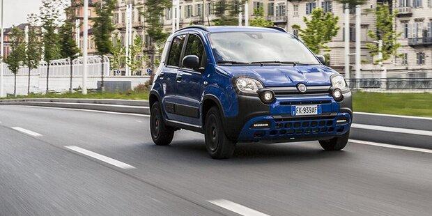 Fiat greift mit dem Panda Waze an