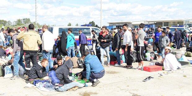 Großteils Afghanen in der Grundversorgung