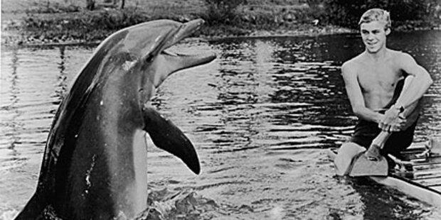 Star-Delfin Flipper beging Selbstmord