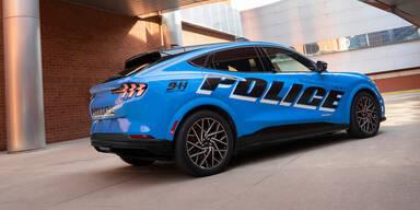 Ford buttert noch mehr Milliarden in E-Autos