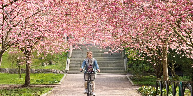 Der Frühling hält Einzug in Salzburg