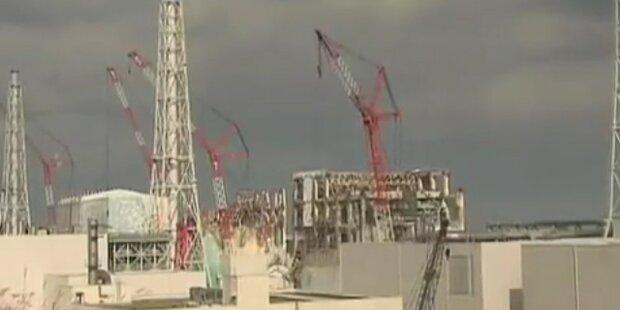 Fukushima: Schockierende Messwerte im AKW