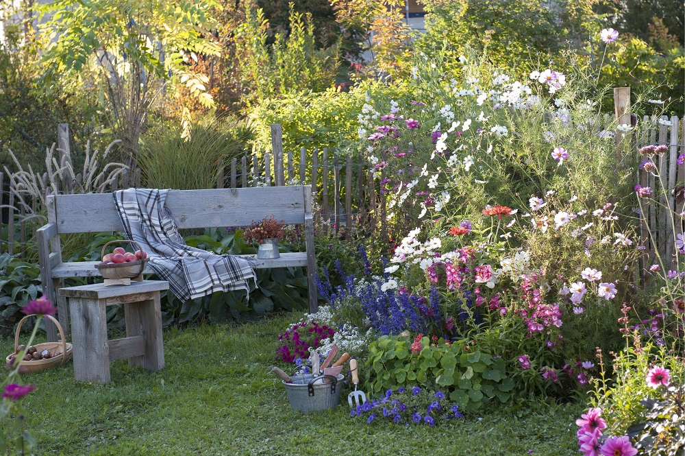 Garten - Garten-CH - Gartenbank, Blumen-Strauch-Arrangement