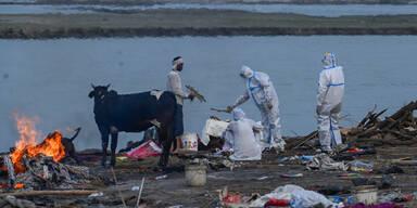 Dutzende Leichen am Ganges angeschwemmt