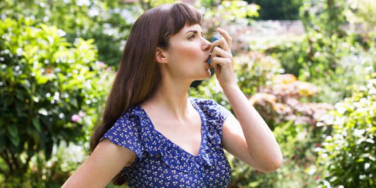 Gefahr für die Lunge - Asthma, COPD