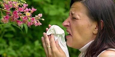 Genaue Notizen helfen bei Allergie-Erkennung