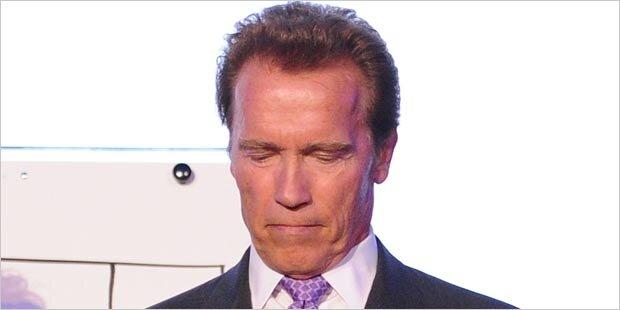 Schwarzenegger trifft Dienstag Fischer und Faymann