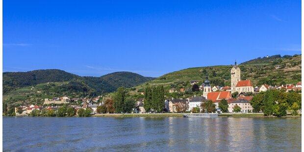 Nach Anzeigen: Staatsanwaltschaft 'fischt' in trüber Donau