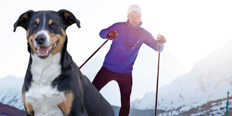 Langläufer stach auf Hund & Herrchen ein