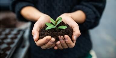 Unsere 5 Tipps für nachhaltigeren Konsum