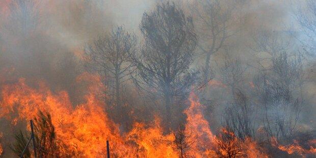 Waldbrand in Kärnten noch nicht unter Kontrolle