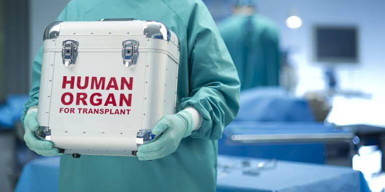 Experten basteln an erstem Roboter-Herz