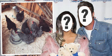 Lady Gaga & Taylor Kinney: Hühnerstall