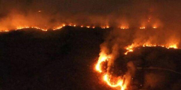 Brände stürzen Welt in Krise