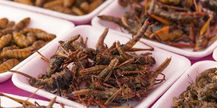 Neue Leitlinie für Insekten als Nahrungsmittel