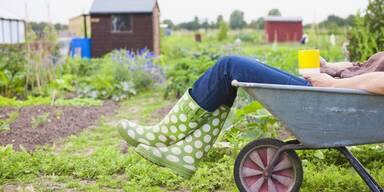 Frau sitzt in einer Schubkarre