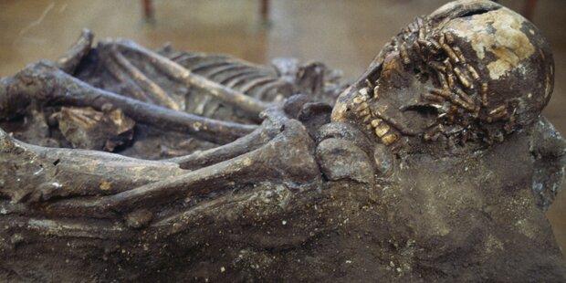 Kanufahrer finden Skelett in Baum