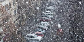 Wetter: Jänner total verrückt