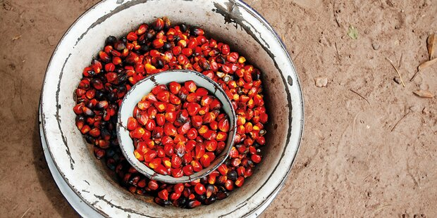 Palmöl - es geht auch ohne!