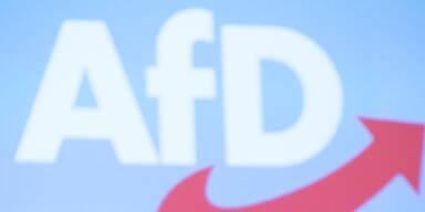AfD-Landeschefs in Baden-Württemberg zurückgetreten