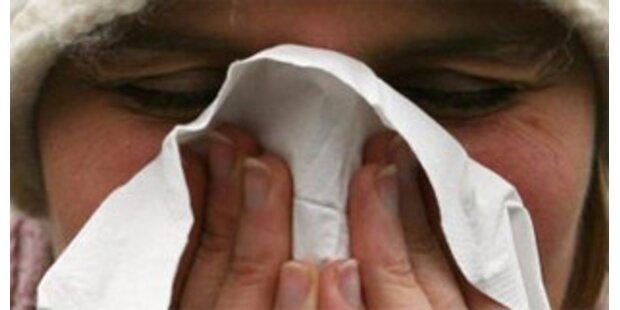 Grippewelle in Österreich auf Rekordkurs