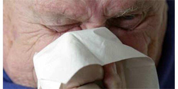 68 Mexikaner an Schweinegrippe gestorben
