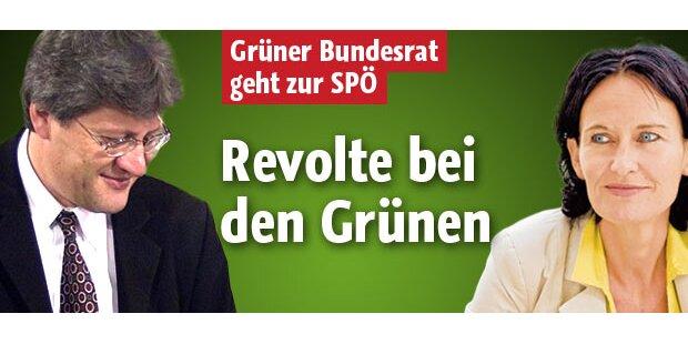 Grüner Schennach wechselt zur Wiener SPÖ