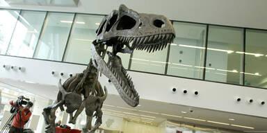 So gefährlich ist der neue Tyrannosaurus