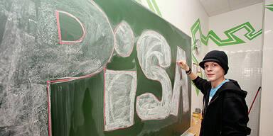 PISA Schulen Schüler Bildungspolitik Klasse