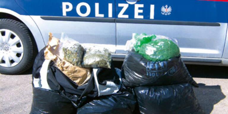 Polizei fand bei Übung 25 Kilo Hanf