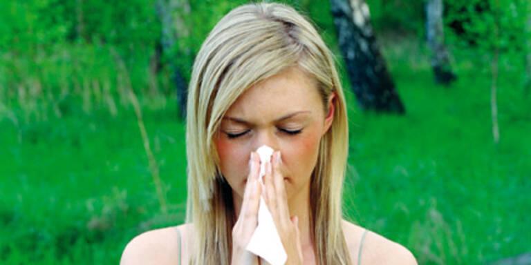 Jeder 5. Österreicher ist Pollen-Allergiker
