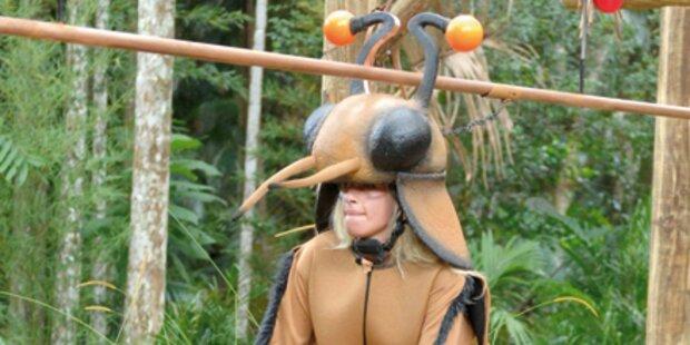 Regenchaos im Dschungelcamp