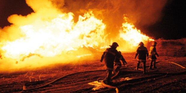 Schilf-Brand: Fahndung nach Feuerteufel
