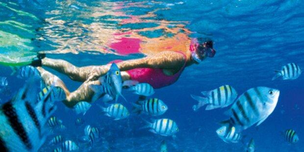 Tauchboot vergaß US-Tourist am Riff