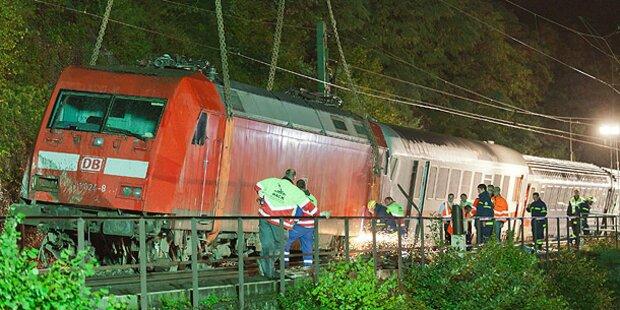 Personen-Zug crasht in Rinderherde