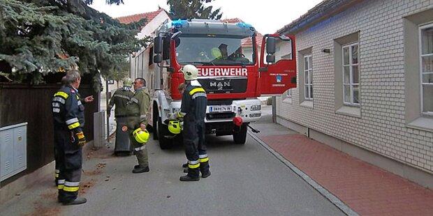 Schlangen-Alarm in Leobersdorf