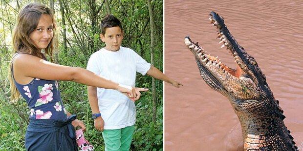 DNA-Rätsel um Scheuch-Kroko