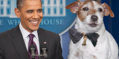 Uggie, Barack Obama