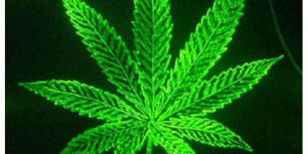 Grüne Jugend für Legalisierung von Hasch