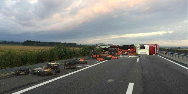 Lkw kippt auf Autobahn um - 4.500 Hühner tot