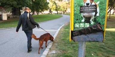Richtige Entsorgung des Hundesackerls