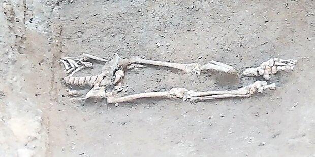 Auf Baustelle: Skelett in Wiener City entdeckt