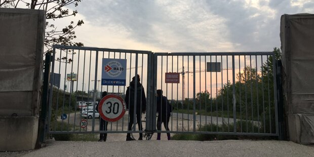 Linke toben in Wien - Stadt schaut weg