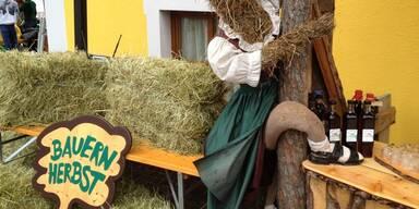 Bauernherbst Faistenau