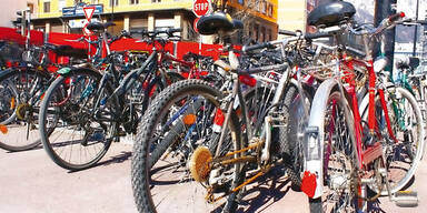 Große Fahrradtauschbörse in Wals