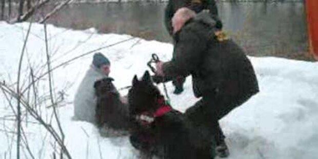 Security bedrohte Mur-Retter mit Hunden